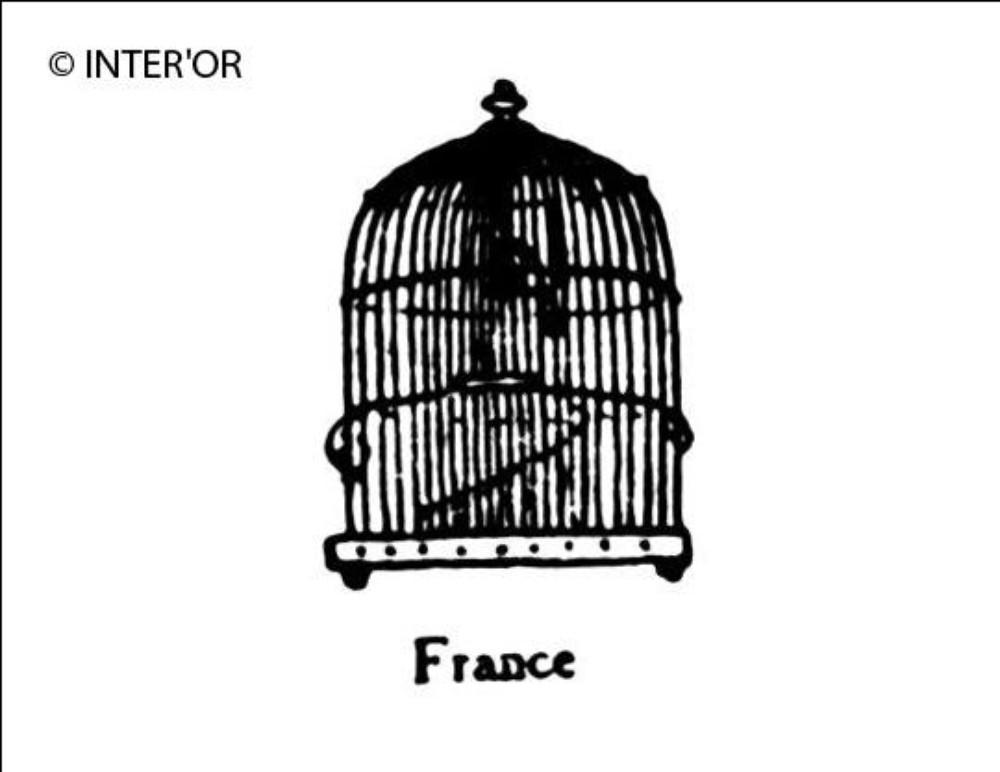 Cage a oiseau