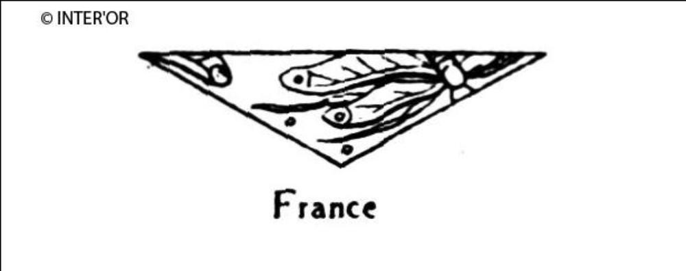 Libellule (parties de)