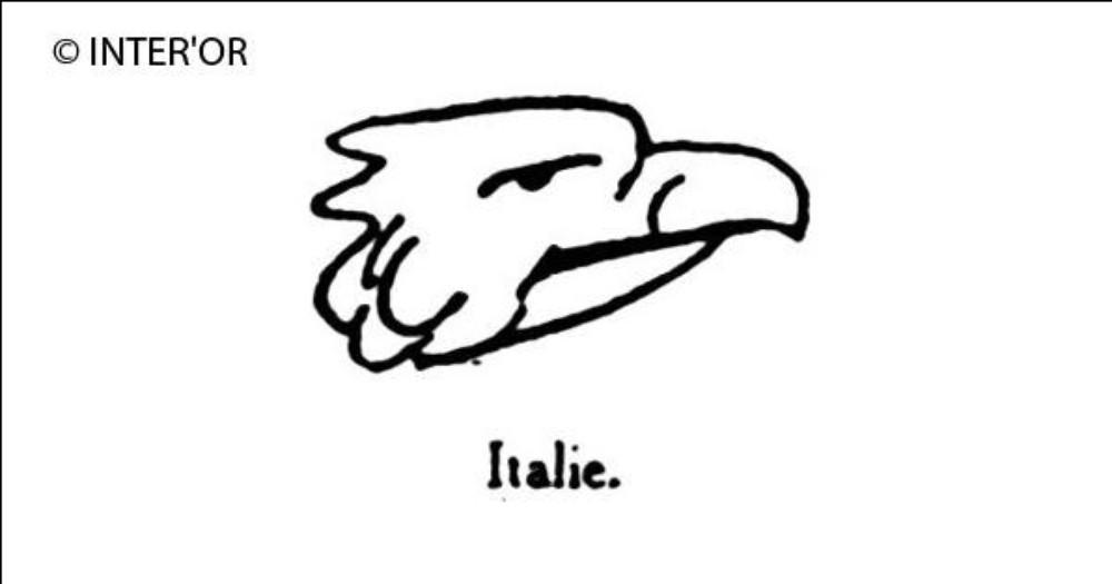 Petite tete d'aigle