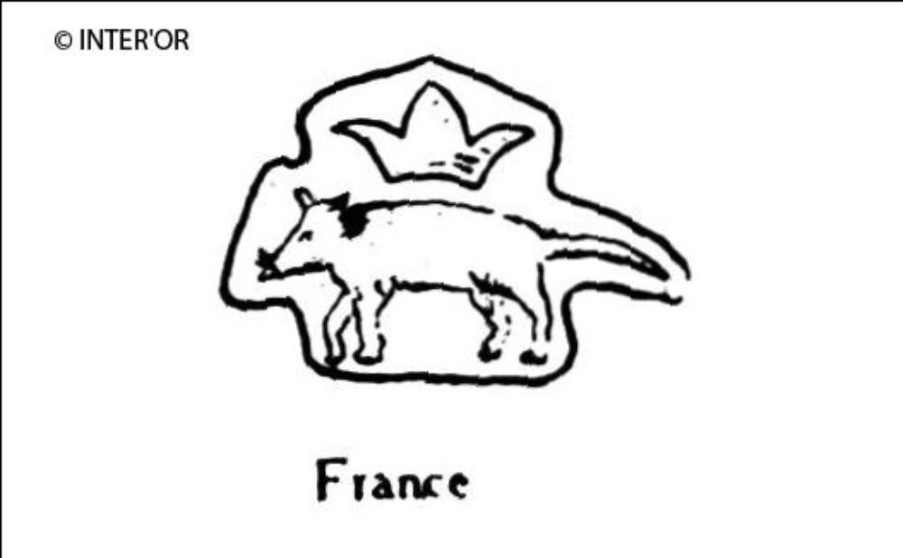 Rat couronne