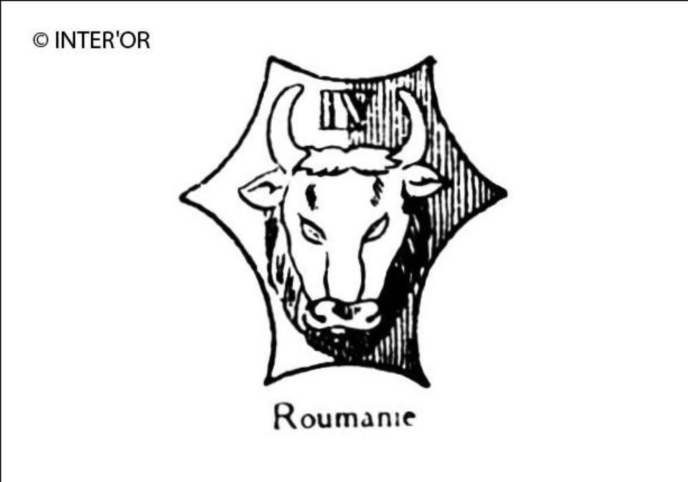 Tete d'aurochs