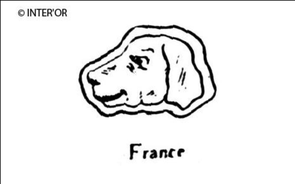 Tete de chien