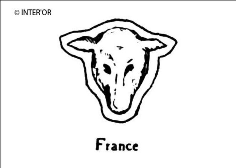 Tete de mouton