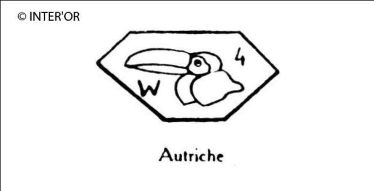Tete de pelican