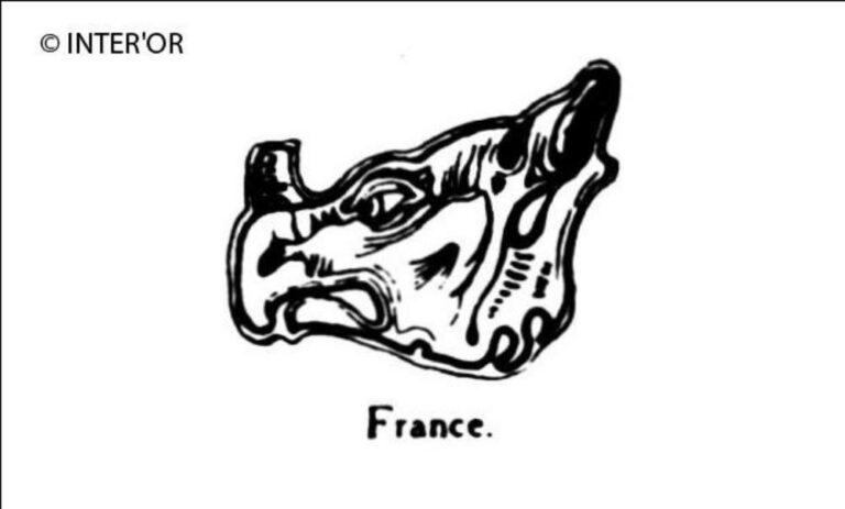 Tete de rhinoceros