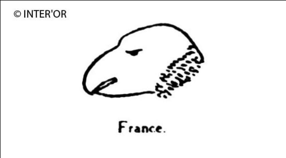 Tete d'oiseau